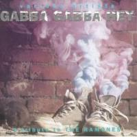 Gabba Gabba Hey: A Tribute to the Ramones - Compiltation/Split