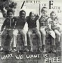 What we want is free de Articles of Faith - Punk-Hardcore