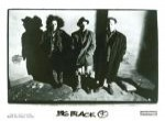 Big Black groupe de Punk-Rock, de Chicago